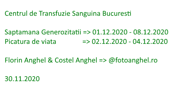 Saptamana Generozitatii, 1 decembrie 2020 - 8 decembrie 2020
