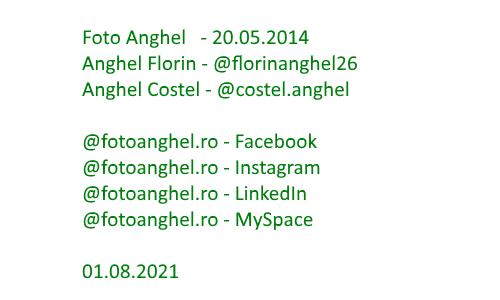 Foto Anghel: Florin Anghel & Costel Anghel